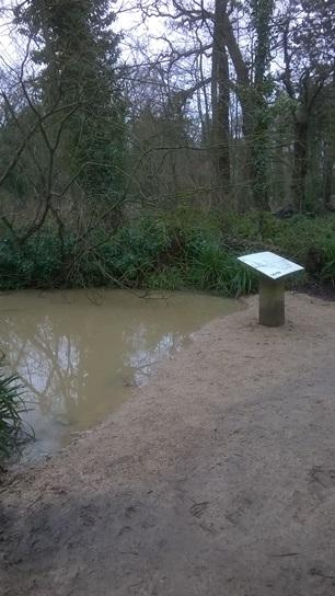 Flooded sections of river at Coombe Country Park