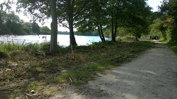 Lakeside walk clearance at Coombe Country Park