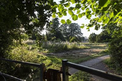 Charterhouse blossom garden