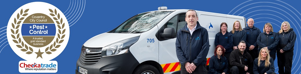 Pest control website banner 1