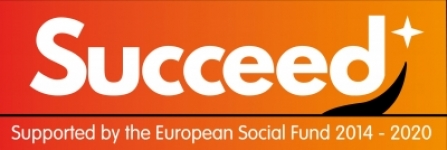 Succeed logo